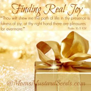 Finding-Real-Joy-in-the-presence-of-God-is-the-fullness-of-joy1