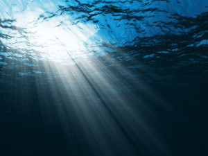 save-the-ocean-tips_13821_600x450
